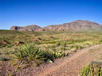 Trail in Franklin Mountains State Park